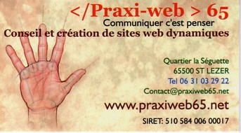 preaxi web